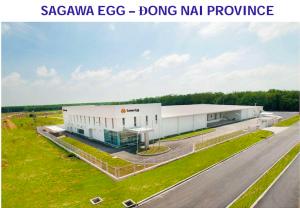 thi-cong-kho-lanh-sagawa-egg